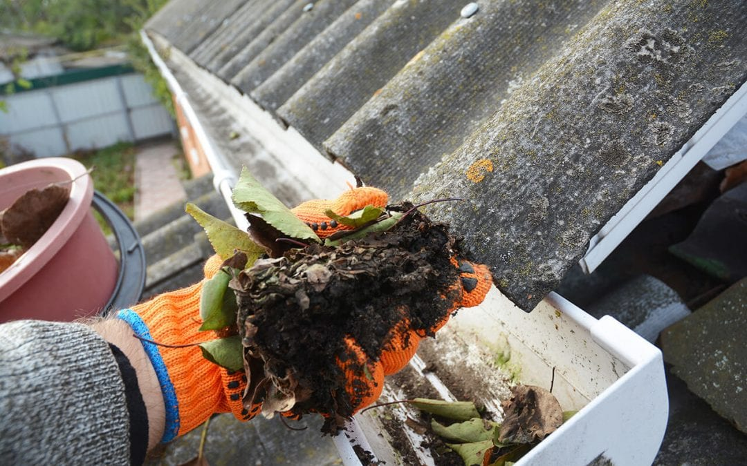 Four Easy Steps to Clean Your Gutters